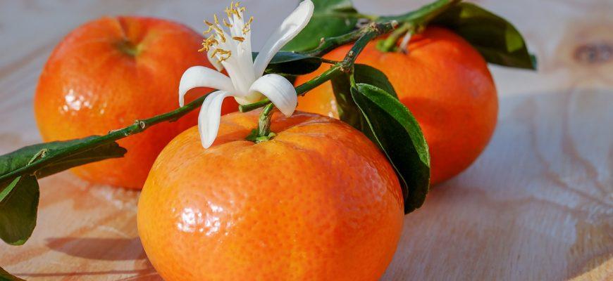 Абхазские мандарины съели вредители