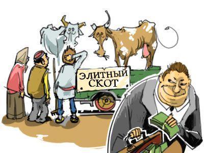 Казахстан: Экс-глава МСХ снова «пристраивается» к коровам