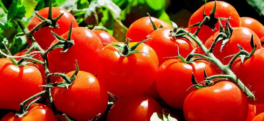 Азербайджан увеличил экспорт томатов в Россию в 1,5 раза