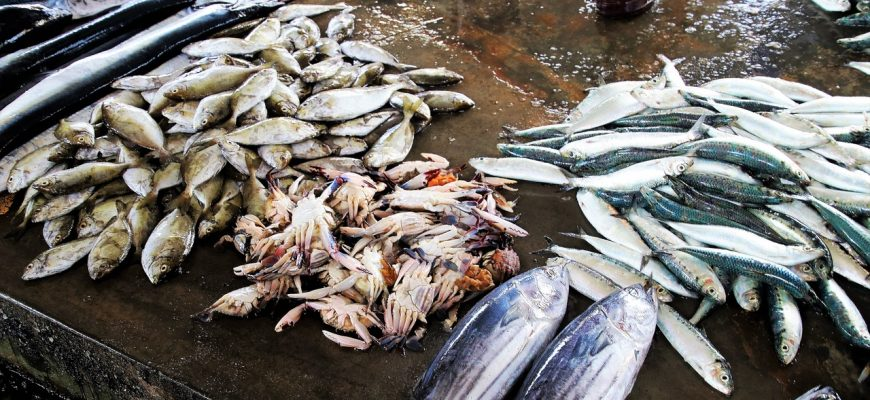 Экспорт рыбы из Ирана вырос на 37%