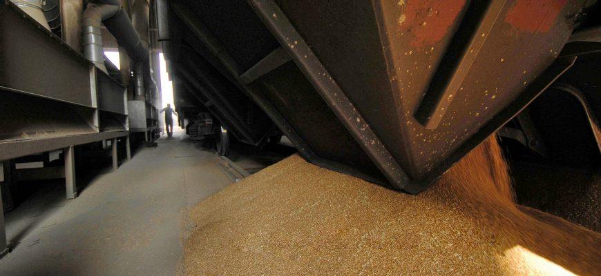 Конечные запасы зерна в России увеличатся до 19,9 млн. тонн в этом году - прогноз