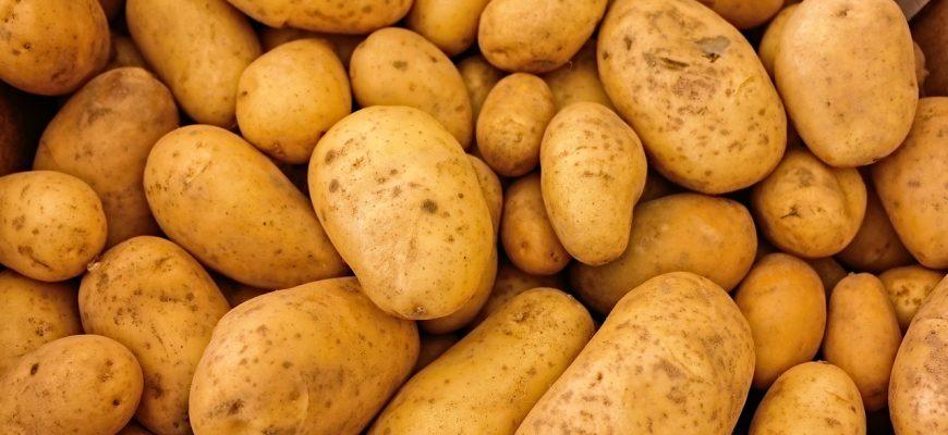 Картофель на российских прилавках взлетит в цене