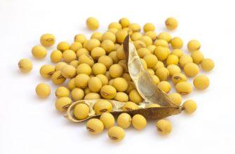 Отчет USDA удивил рынок сокращением посевных площадей сои