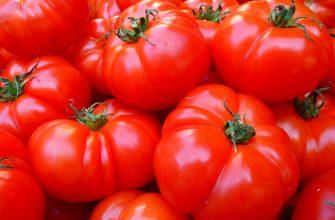 Россельхознадзор проверит еще 13 турецких поставщиков томатов
