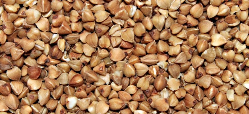 За I полугодие продукция растениеводства в Казахстане подешевела на 0,2%