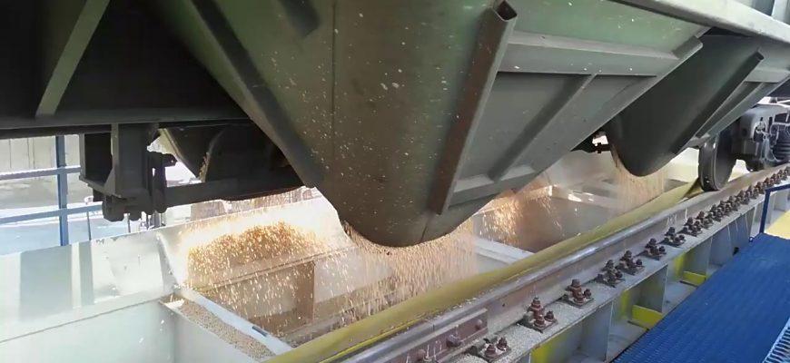 Иркутская область планирует поставлять в Китай до 40 тыс. тонн пшеницы в год