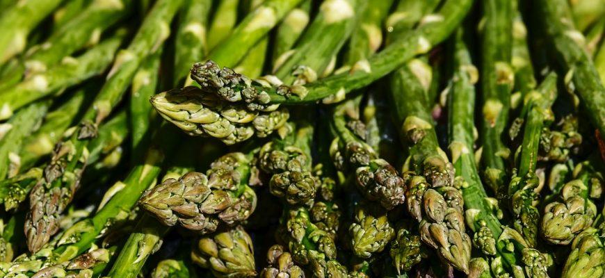 Россия: В Северной Осетии собрали первый урожай спаржи