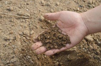 Наличие картограмм для крестьян отсрочили до 2021 года