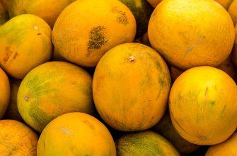 Россельхознадзор не пропустил 270 кг дынь и 100 кг арбузов из Казахстана