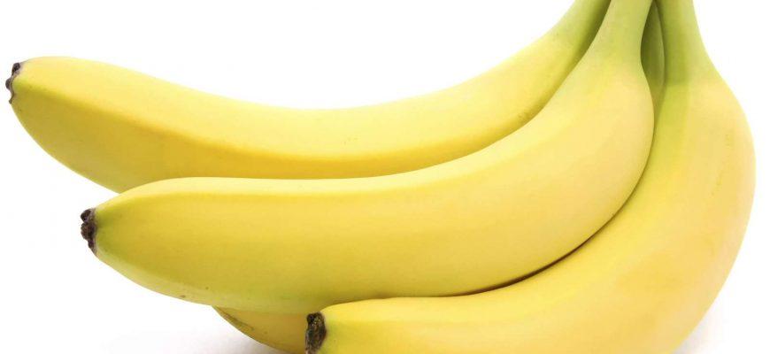 «Панамская болезнь» вновь угрожает бананам