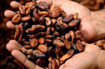 Котировки какао, кофе и сахара во второй части мая укрепились