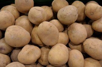 Зимой картофеля не будет