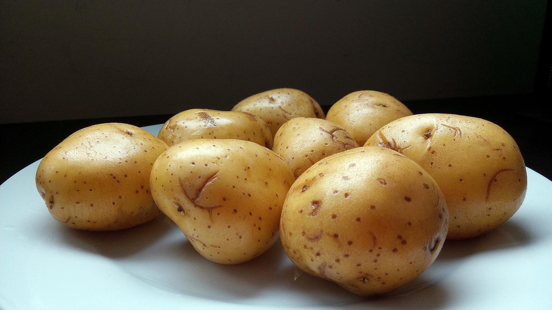 МСХ России просит регионы обсудить с производителями цены на макароны, яйца и картофель