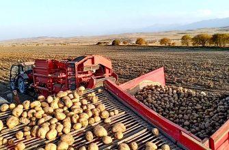 Фермеры трудятся, не покладая рук