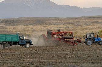 В Павлодарской области аграрии пожаловались на излишнюю бюрократию в сфере АПК