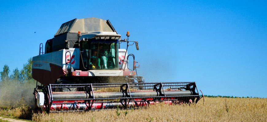 Волгоградская озимая пшеница показывает качество