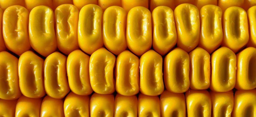 Печенье из своей овсянки, хлопья — из своей кукурузы