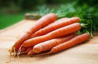 В Петропавловске морковь подорожала на 31%