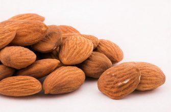 Можно ли потолстеть на орехах?