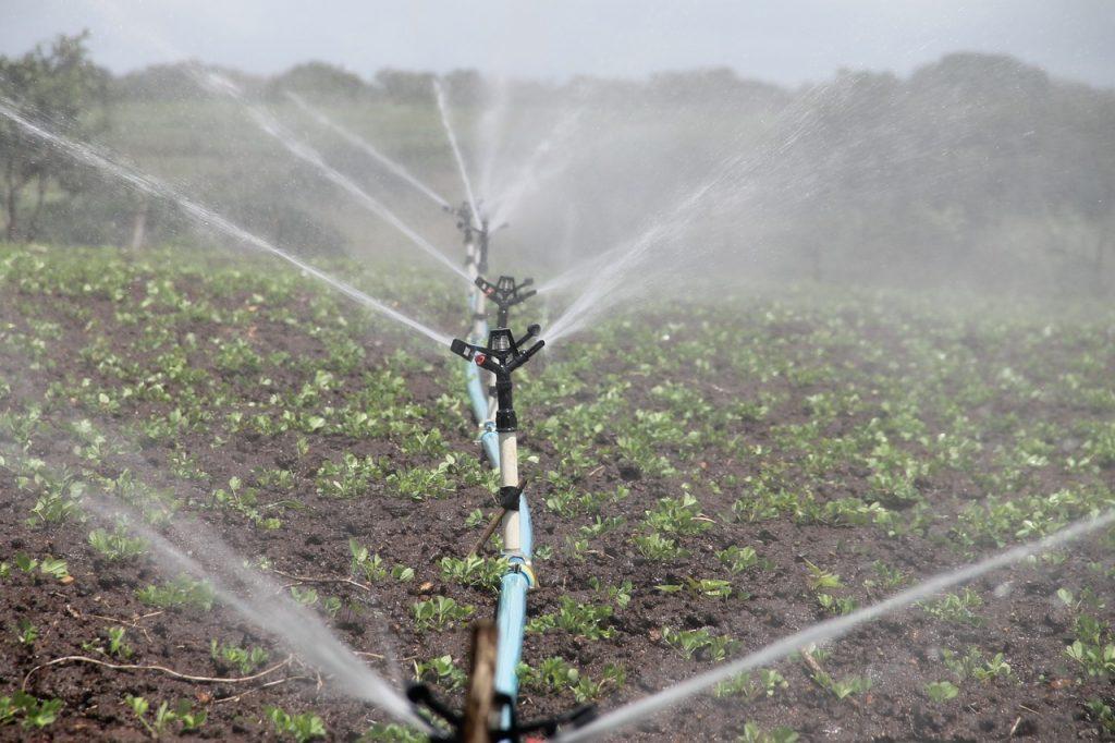 Казахстану необходима аграрная реформа