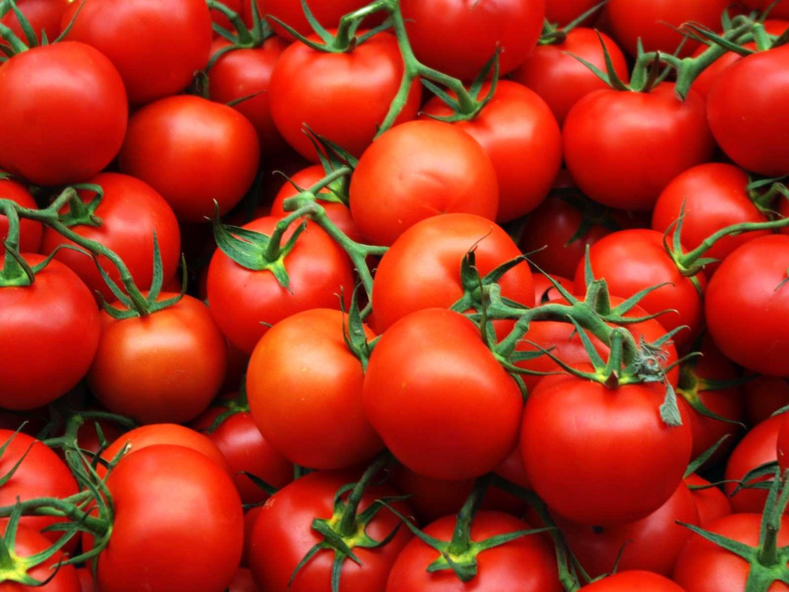Азербайджан сократил экспорт томатов на 5%