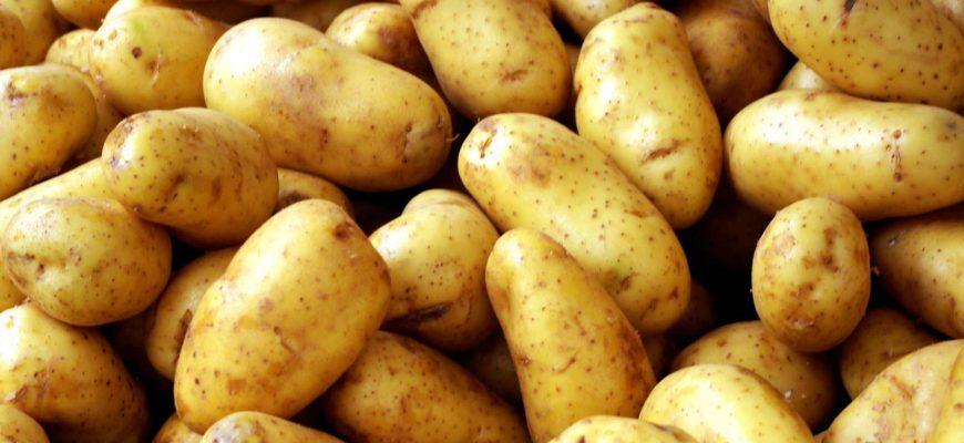 В Казахстане с начала года картофель подорожал на 28,5%