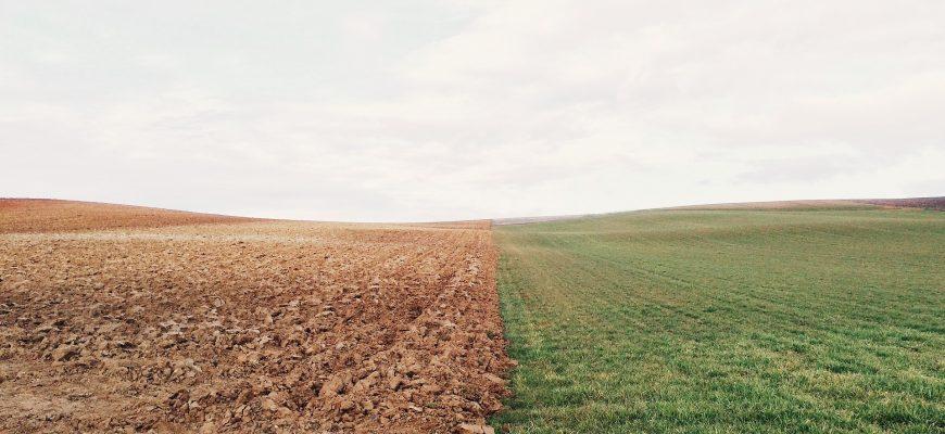 Земля продается с торгов