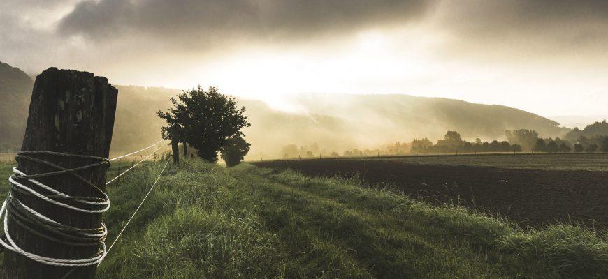 Десятикратным налогом облагают нерадивых павлодарских землепользователей