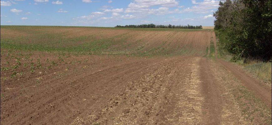 Казахстан не будет продавать землю иностранцам