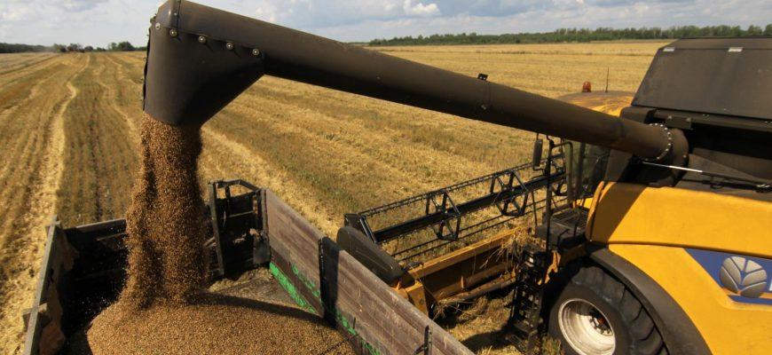 Россия: Производство зерна в Бурятии выросло в 1,8 раза