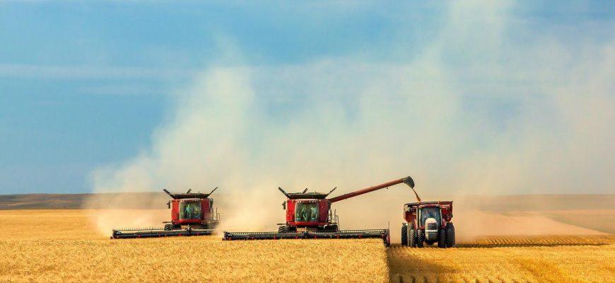 Производство зерна в мире составит 2,177 млн. тонн в 2019-20 МГ - прогноз