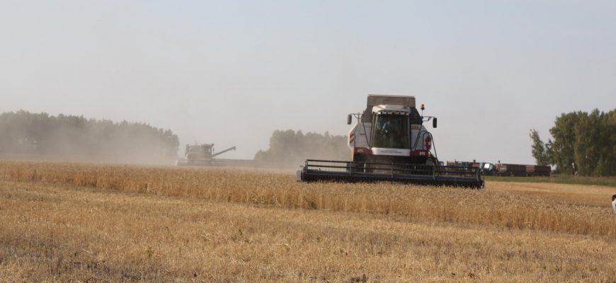 Россия: Аграрии Рязанской области приступили к пробной уборке зерновых