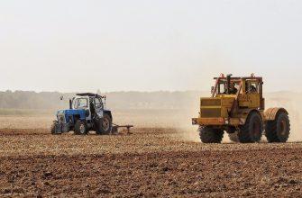В Башкирии гречихой засеют более 54 тысяч гектар