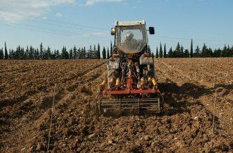 Яровой сев в Красноярском крае идет с опережением графика