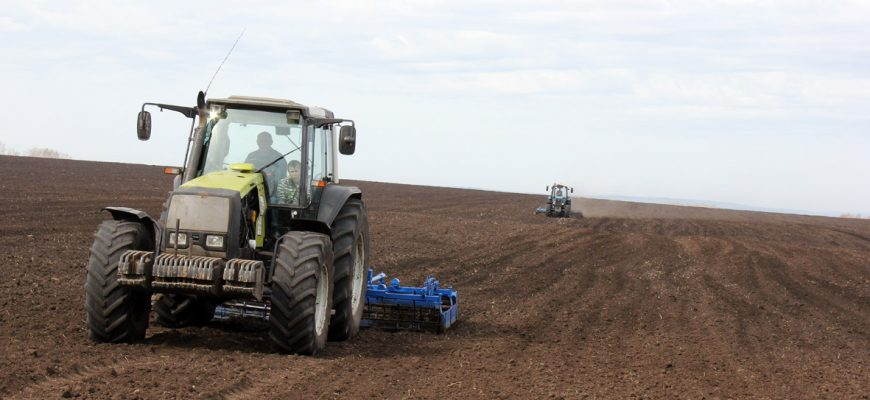 Фермеры Кыргызстана в 2019 году увеличили площадь посева ячменя и пшеницы