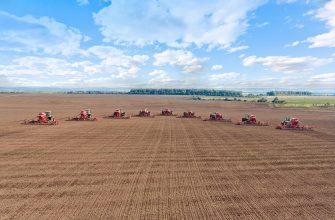 В Тамбовской области ожидают хороший урожай