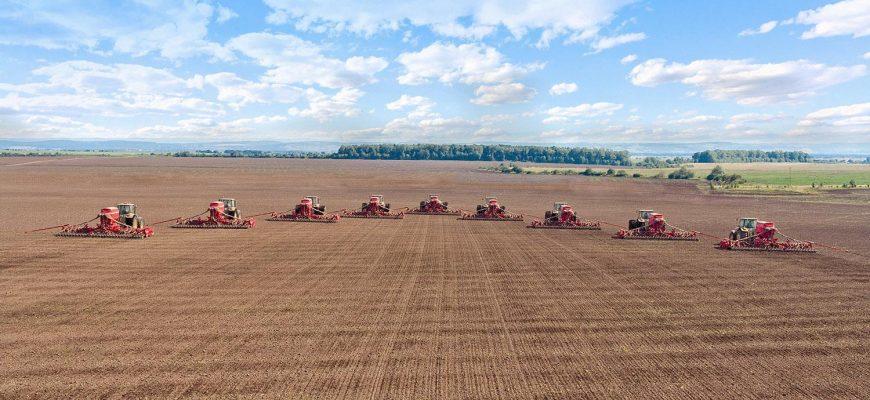 Прогноз по севу пшеницы в России перевыполнен