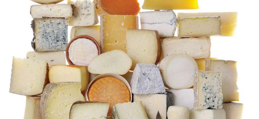 Россия: В Подмосковье откроют производство мягких сыров