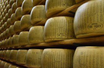 Сыровары Казахстана покоряют внешние рынки