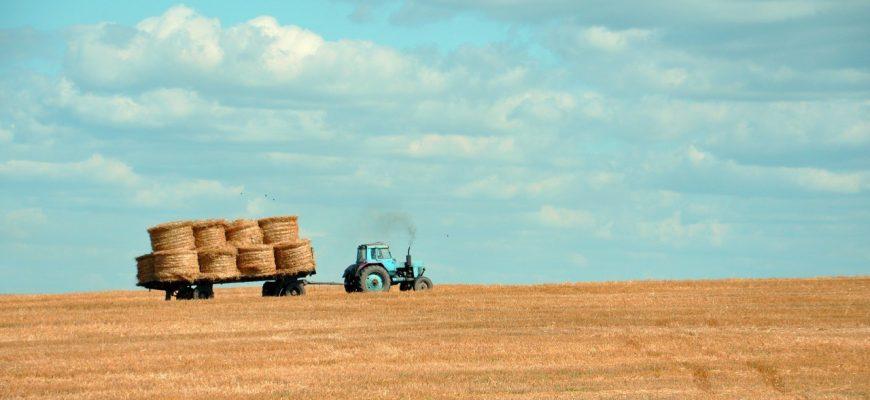 Российские производители сельхозтехники попросили Медведева увеличить субсидии
