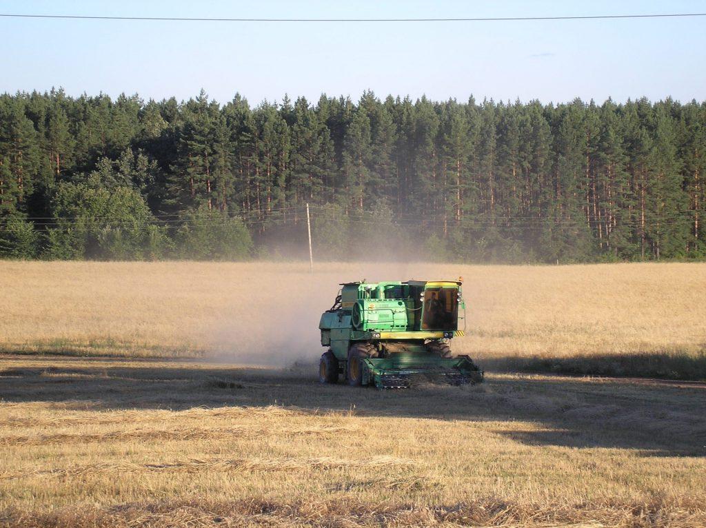 В Алтайском крае спрогнозировали урожай-2021