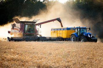 Урожайность зерновых в Калининградской области значительно выше чем в среднем по России
