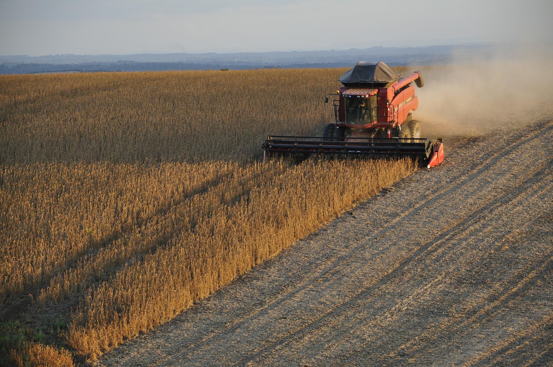 В Татарстане собрали первый миллион зерна быстрее, чем год назад