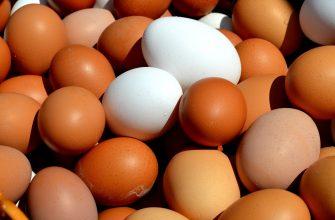 В Петропавловске из-за птичьего гриппа подорожали яйца