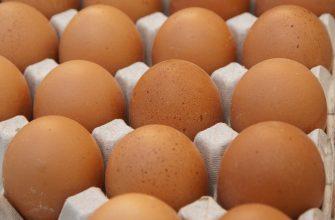 Россияне ежегодно съедают яиц на 8% больше рекомендованной нормы
