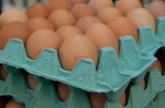 В Петропавловске за неделю яйца подорожали на 87%