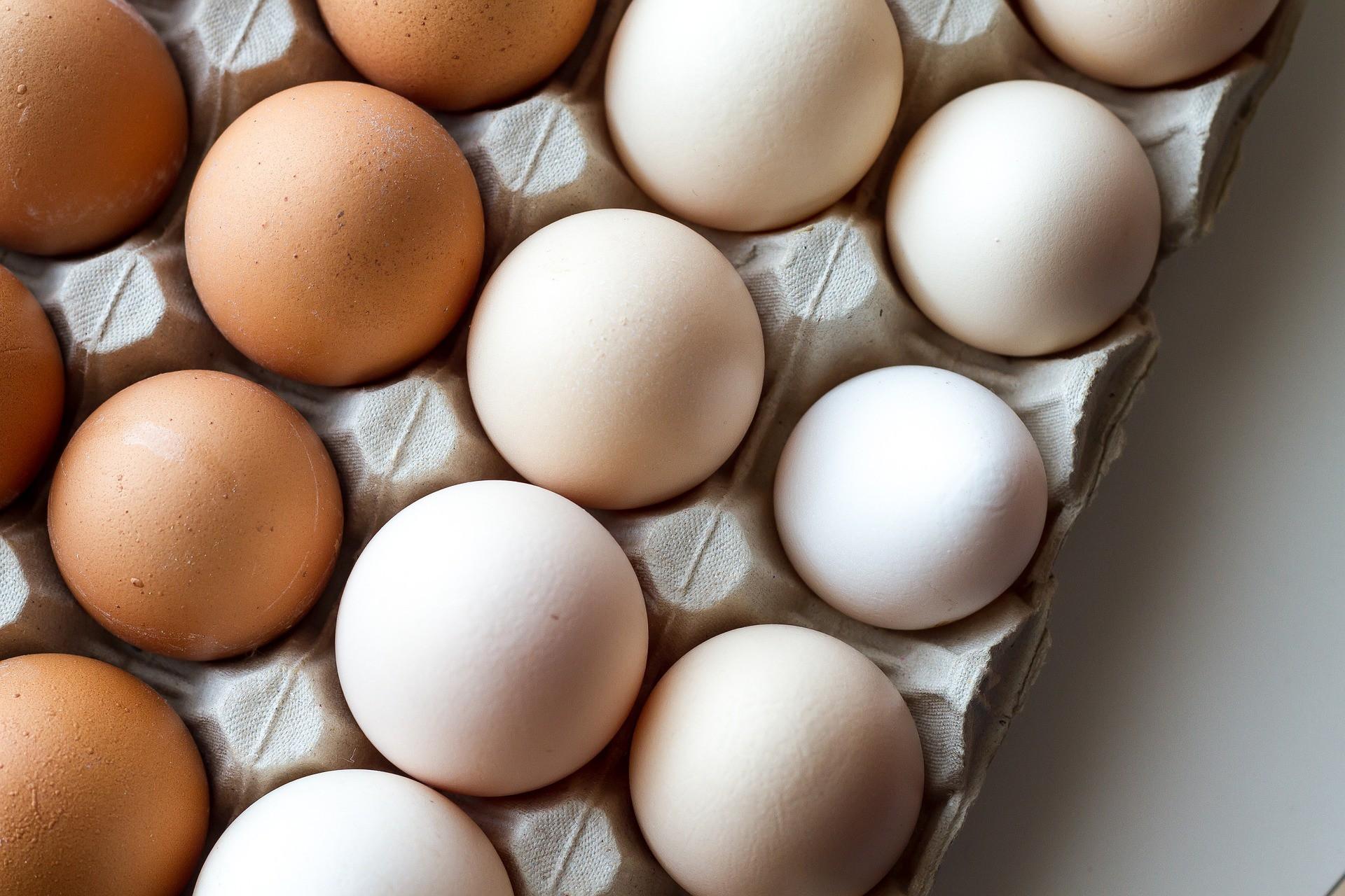 В Ярославской области заинтересованы в расширении яичной продукции