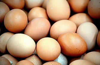 Почему в Казахстане на самом деле дорожают яйца?