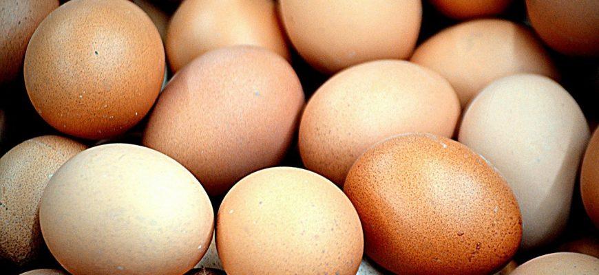 В Казахстане придумали, как сдержать цены на яйца и подсолнечное масло