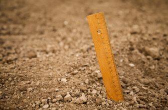 В ряде районов Челябинской области – почвенная засуха